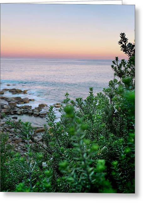 Nature Photo Greeting Cards - Beach Retreat Greeting Card by Az Jackson