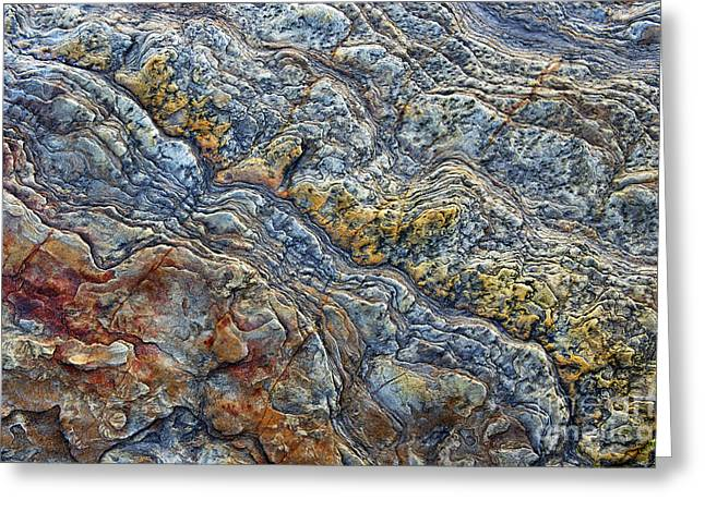 Northumberland Greeting Cards - Beach Rock Pattern  Greeting Card by Tim Gainey