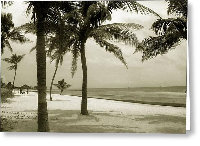 Beach Photos Greeting Cards - Beach scene in Key West Greeting Card by Susanne Van Hulst