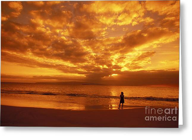Amazing Sunset Greeting Cards - Beach Silhouette Greeting Card by Dave Fleetham - Printscapes