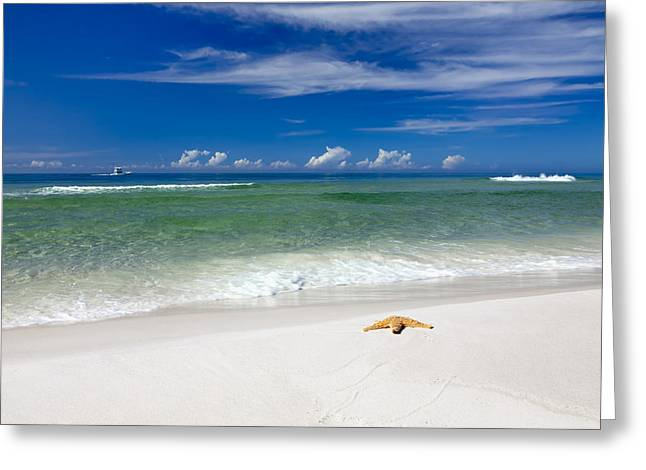 Background Greeting Cards - Beach Splendour Greeting Card by Janet Fikar