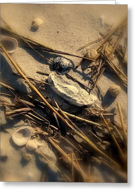 Beach Still Life Greeting Card by Susanne Van Hulst
