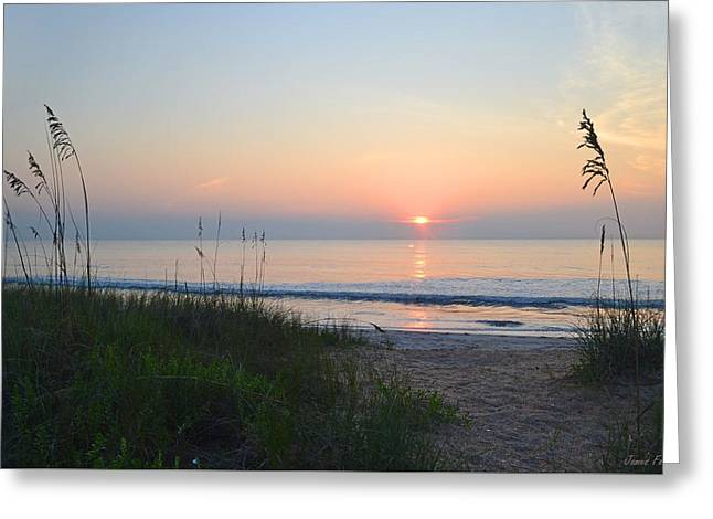 Reflection In Water Greeting Cards - Beach Sunrise A4 Greeting Card by James Fowler