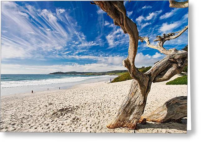 Beach Landscape Greeting Cards - Beach View Carmel by the Sea California Greeting Card by George Oze
