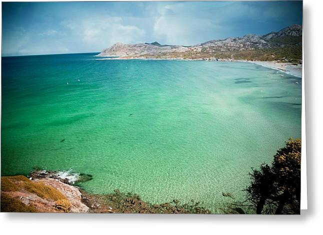 Ocean Landscape Greeting Cards - Beachcomber Greeting Card by Digital Art Cafe