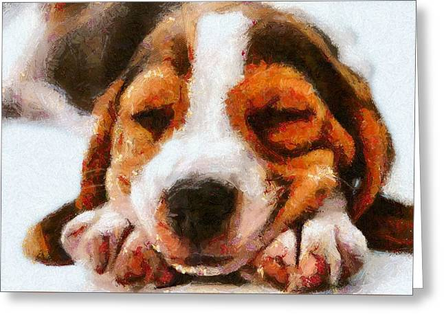 Puppies Digital Greeting Cards - Beagle Puppy Greeting Card by Charmaine Zoe
