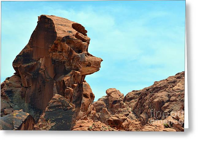 Boulders Tapestries - Textiles Greeting Cards - Bear Face Rock Greeting Card by Edna Weber