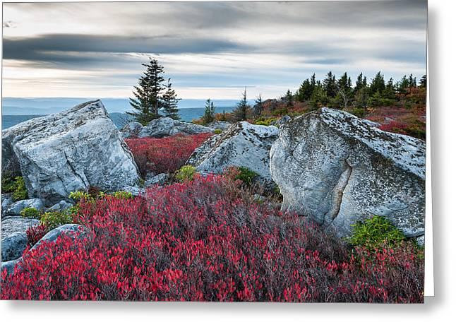 Dolly Sods Wilderness Greeting Cards - Bear Rocks Preserve West Virginia Greeting Card by Mark VanDyke