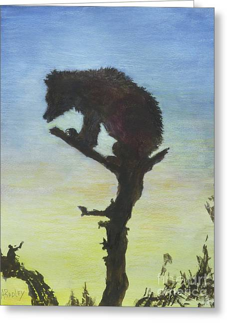 Bear With A View Greeting Card by Ann Radley