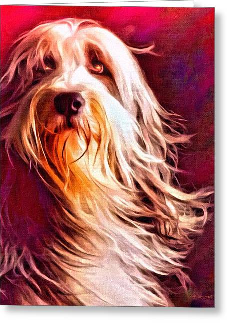 Digital Designs Greeting Cards - Bearded Collie Portrait 2 Greeting Card by Scott Wallace