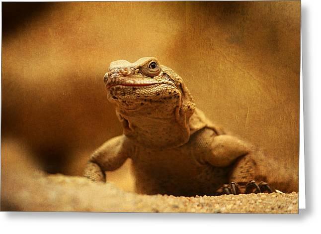 Lizard Head Greeting Cards - Bearded Dragon Greeting Card by Heike Hultsch