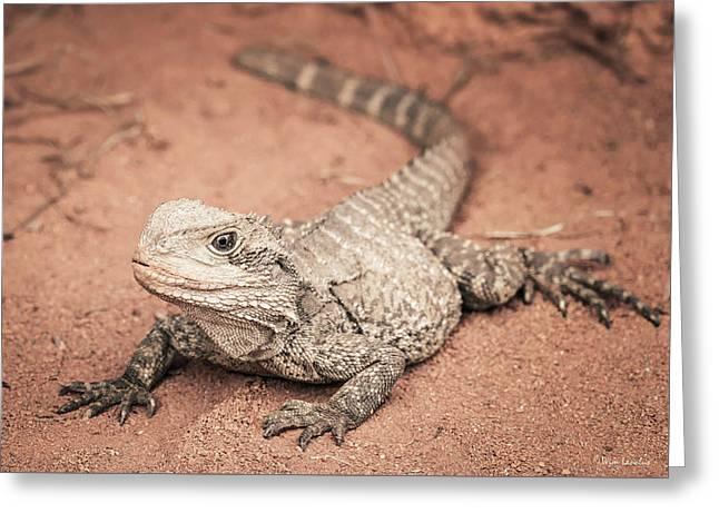Bearded Dragon Lizard Greeting Card by Wim Lanclus