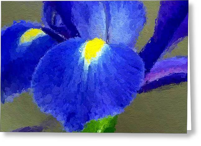 Spring Bulbs Greeting Cards - Bearded Iris Greeting Card by Anthony Fishburne