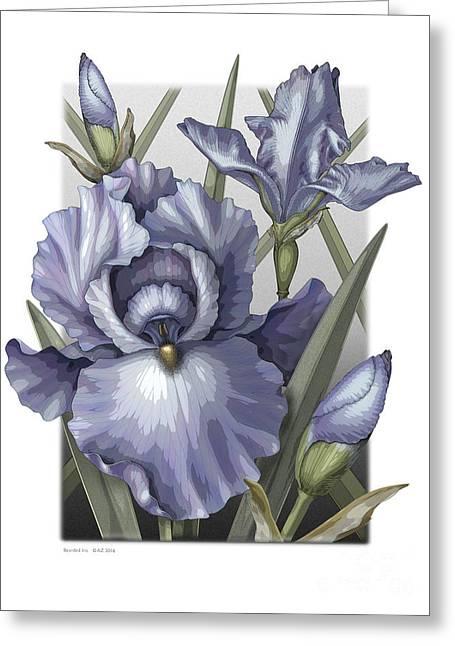 Bearded Iris Greeting Card by David Azzarello