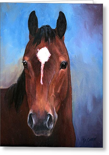 Quarter Horses Greeting Cards - Beau  Quarter horse portrait Greeting Card by Kim Corpany