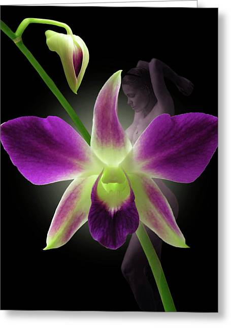 Sensuous Art Greeting Cards - Beauties Greeting Card by Torie Tiffany