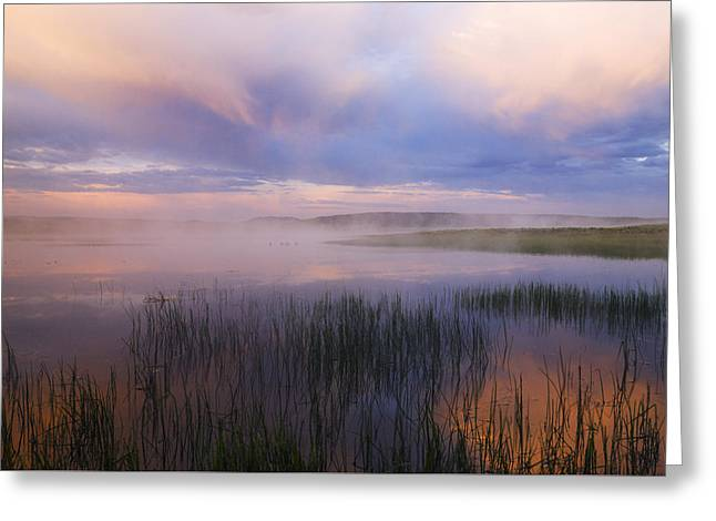 Fog Rising Greeting Cards - Beautiful and dramatic sunrise in Yellowstone National Park  Greeting Card by Vishwanath Bhat