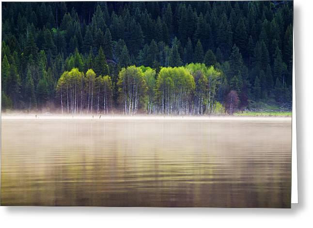 Fog Rising Greeting Cards - Beautiful and serene scene at a lake in McCall Idaho Greeting Card by Vishwanath Bhat