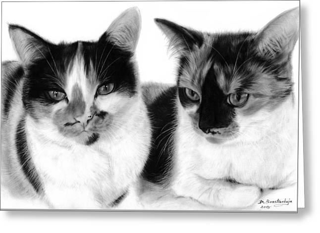 Hyperrealistic Greeting Cards - Beautiful Cats Greeting Card by Danguole Serstinskaja