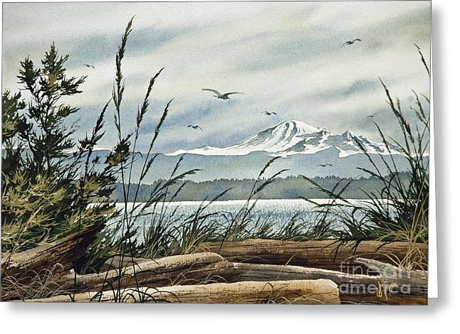 Landscape Framed Prints Greeting Cards - Beautiful Coast Greeting Card by James Williamson