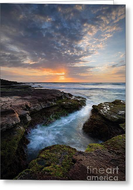 Algae Greeting Cards - Beautiful coastal sunrise Greeting Card by Leah-Anne Thompson
