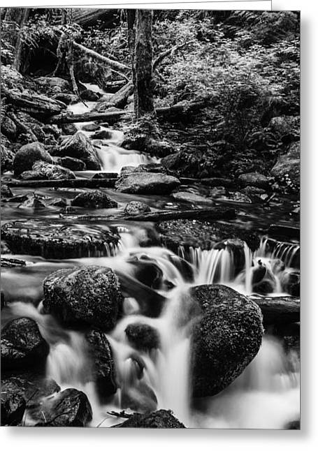 Stones Greeting Cards - Beautiful creek in Columbia River Gorge in black and white  Greeting Card by Vishwanath Bhat