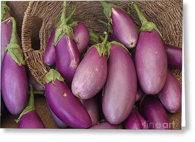 Bloosom Greeting Cards - Beautiful Eggplant In A Basket Greeting Card by Jasna Gopic