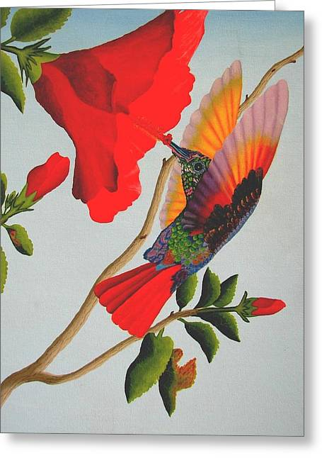 Beautiful Hummingbird Greeting Card by Brian Leverton