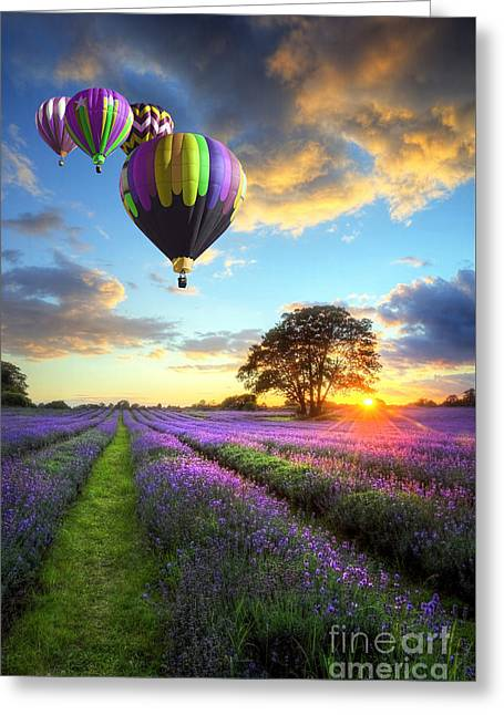 Beautiful Image Of Stunning Sunset With Atmospheric Clouds And Sky Over Vibrant Ripe Lavender Fields Greeting Card by Unknow