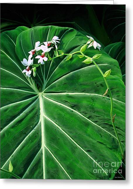 Philodendron Greeting Cards - Beautiful Ivory Veins of a Philodendron Greeting Card by Sue Melvin