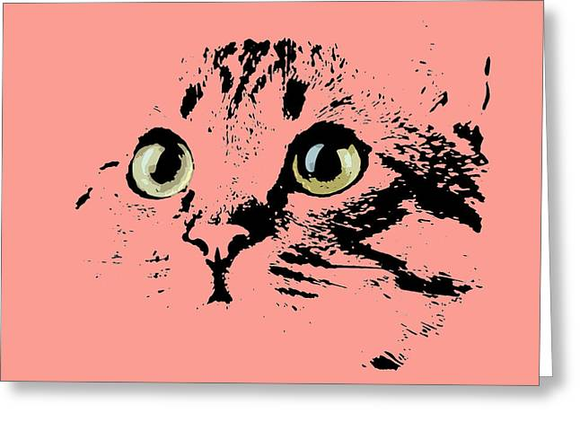 Beautiful Kitten Portrait Greeting Card by Pablo Franchi