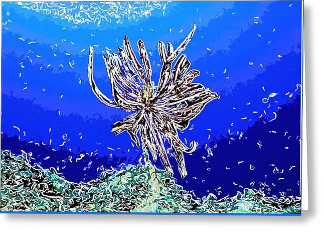 Doughboy Paintings Greeting Cards - Beautiful marine plants 1 Greeting Card by Lanjee Chee