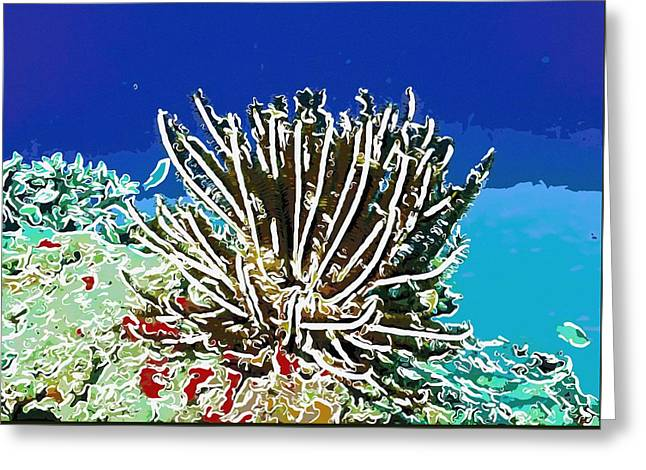 Seastar Paintings Greeting Cards - Beautiful marine plants 11 Greeting Card by Lanjee Chee