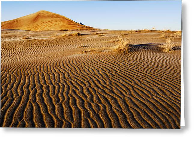 Sand Pattern Greeting Cards - Beautiful morning at Bruneau Dunes State Park Idaho USA Greeting Card by Vishwanath Bhat