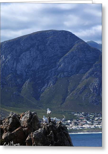 Ocean Art Photos Greeting Cards - Beautiful Mountain View Greeting Card by Earl Maree