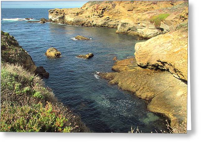 Point Lobos Greeting Cards - Beautiful Point Lobos Vista Greeting Card by Joyce Dickens