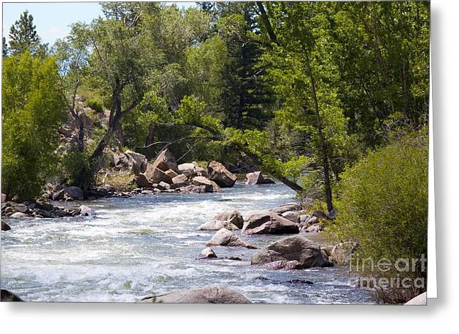 Water Flowing Greeting Cards - Beautiful scene on the Arkansas River in Colorado in the Summertime Greeting Card by Steve Krull