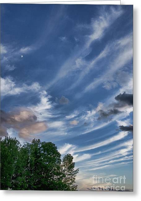 Award Winning Art Greeting Cards - Beautiful Sky Greeting Card by Alana Ranney
