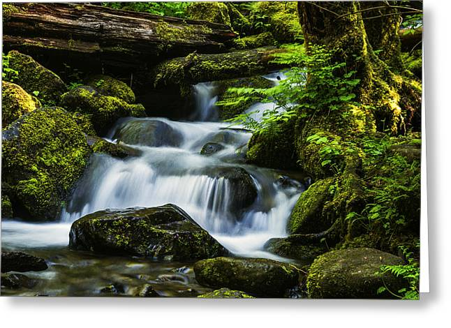 Stones Greeting Cards - Beautiful stream in Columbia River Gorge Oregon Greeting Card by Vishwanath Bhat