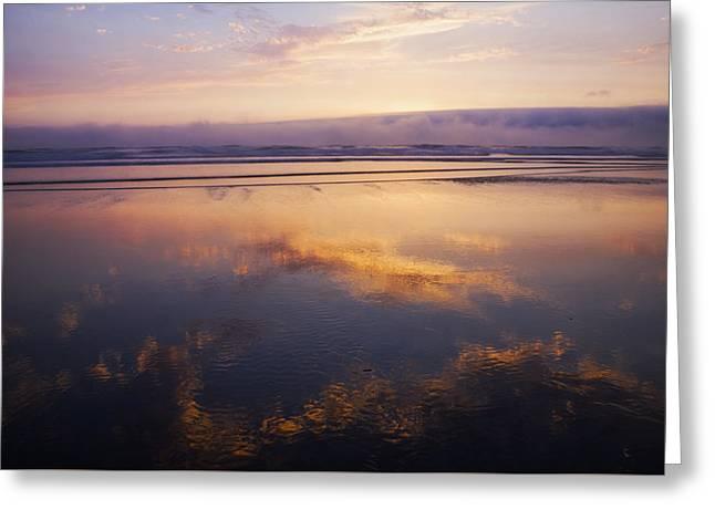 Peaceful Scene Greeting Cards - Beautiful sunset along Oregon Coast Greeting Card by Vishwanath Bhat