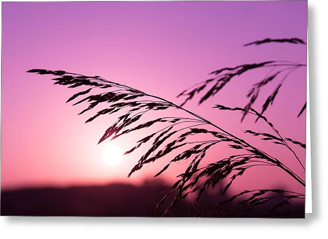 Shadows Tapestries - Textiles Greeting Cards - Beautiful sunset Greeting Card by Marco Amenta