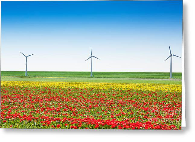 Power Plants Greeting Cards - Beautiful tulip field with windmills and sky Greeting Card by Sergey Novikov