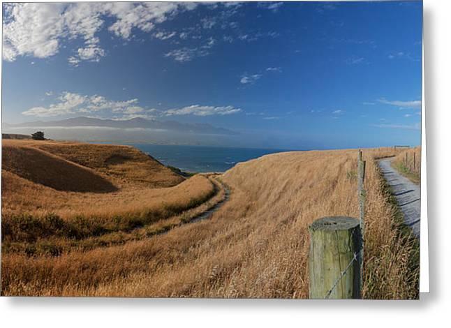 Ocean Panorama Greeting Cards - Beautiful views from Kaikoura Peninsula Walkway Greeting Card by Tsvi Braverman