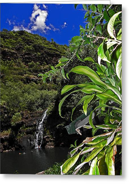 Waimea Falls Greeting Cards - Beautiful Waimea Falls II Greeting Card by Elizabeth Hoskinson