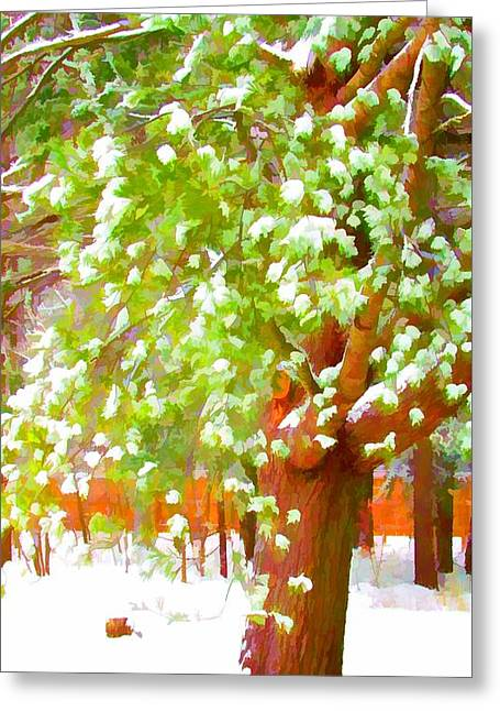 Beautiful Winter Tree Greeting Card by Lanjee Chee