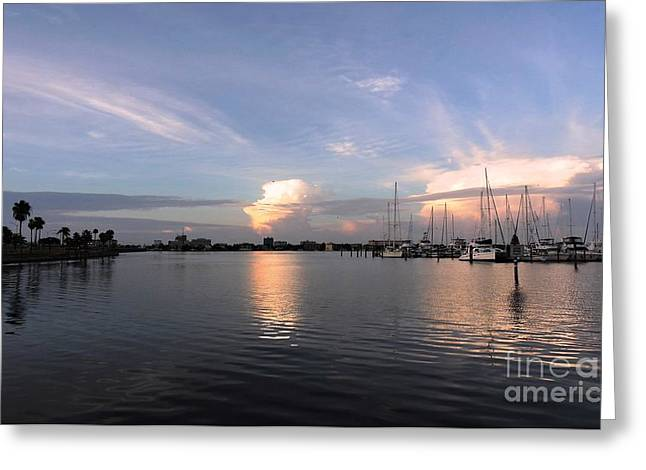 Docked Sailboats Greeting Cards - Beauty Greeting Card by Beth Williams