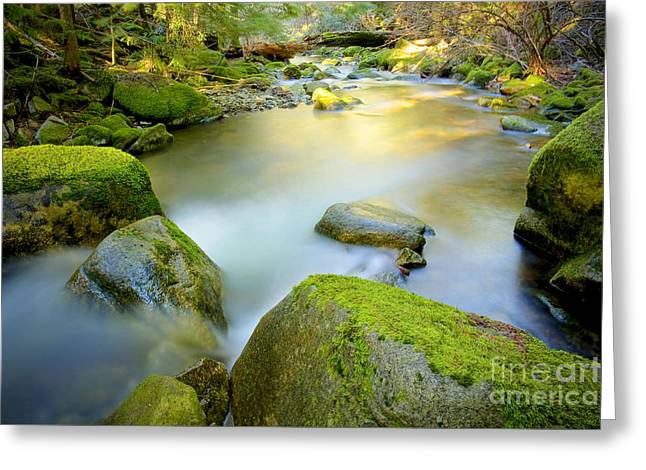 Water Flowing Greeting Cards - Beauty Creek Greeting Card by Idaho Scenic Images Linda Lantzy