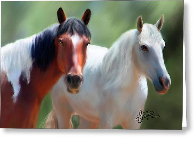 Colorado Cowgirl Greeting Cards - Beauty in Colorado  Greeting Card by Colleen Taylor