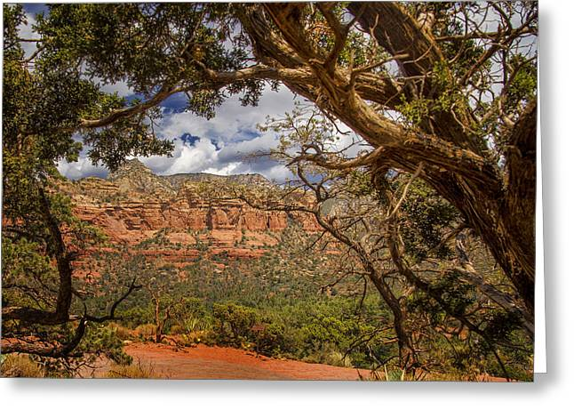 Oak Creek Greeting Cards - Beauty Of Sedona - Arizona Greeting Card by Jon Berghoff