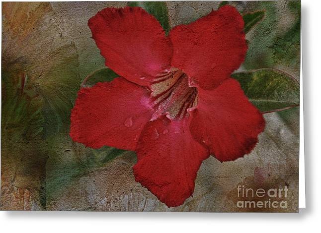 Dew Paintings Greeting Cards - Beauty of the Desert Rose Greeting Card by Deborah Benoit